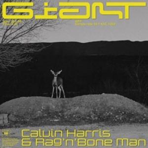 Calvin Harris, Ragnbone Man - Giant