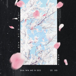 Shawn Mendes - Lost In Japan (Zedd Rmx