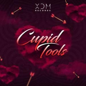 XDM Records - Cupid Tools