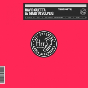 David Guetta, Martin Solveig - Thing For You